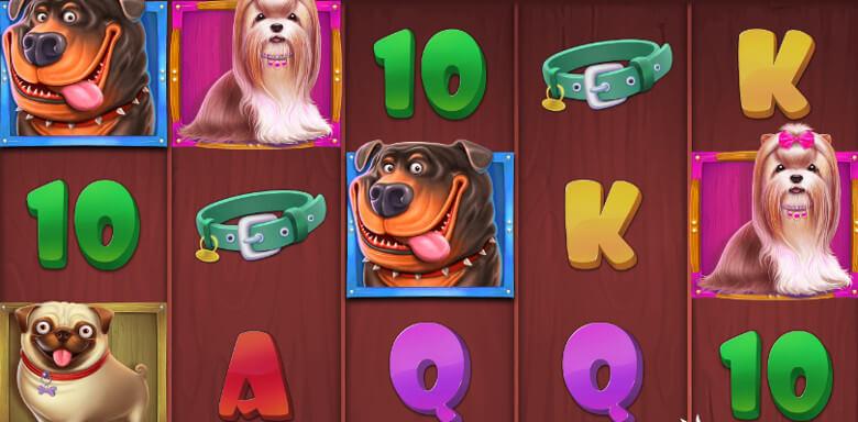 Dog House symboler